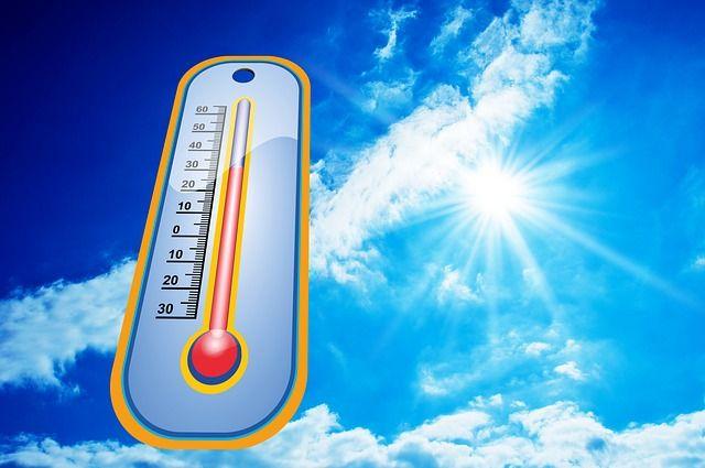 el golpe de calor seguros salud
